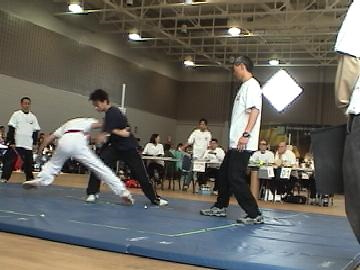 2007 Canadian Taiji Open Championships