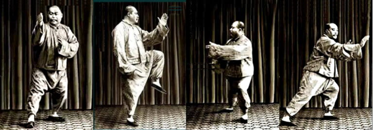 What is Yang Style Tai Chi?