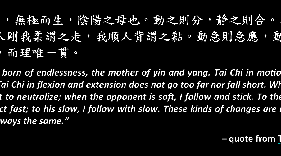 The Taijiquan Treatise Explained: Part 1 of 3 (太極拳論-1)