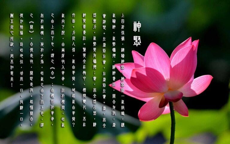 Vital Energy Focused 神 聚