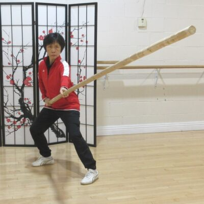 Long Pole exercises for Tai Chi training